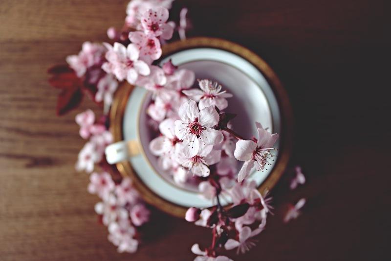 Reiki - Aromatherapy
